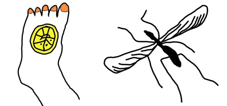 9-diy-home-remedies-for-relieving-itchy-mosquito-bites.1280x600.jpg